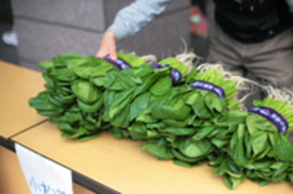 写真:葛飾区内で採れた野菜など