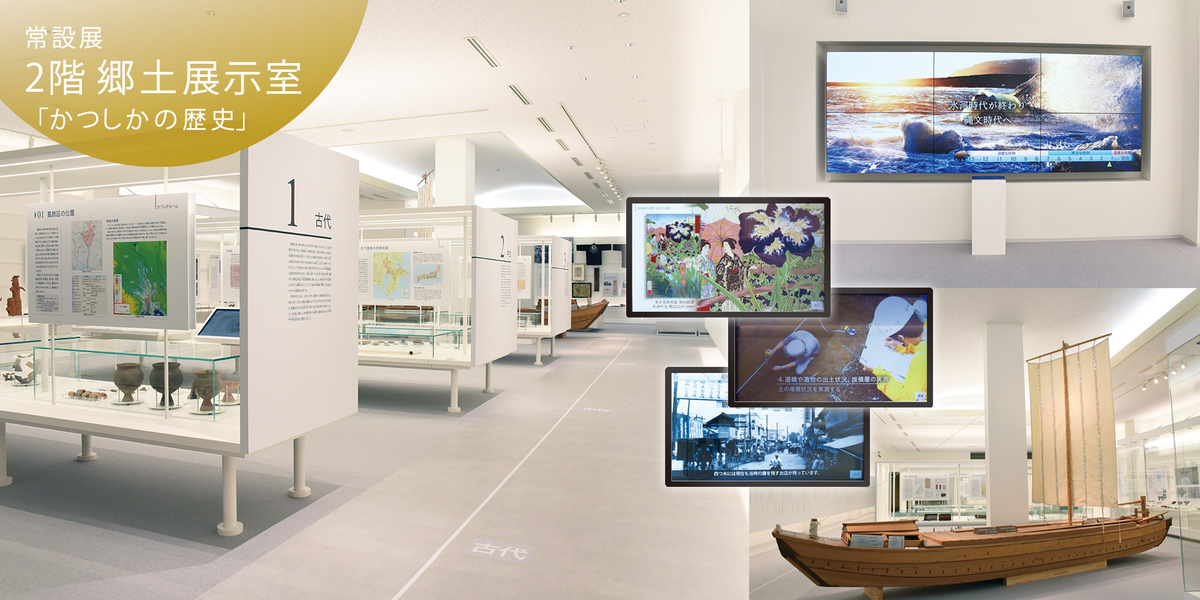 常設展 2階 郷土展示室「かつしかの歴史」